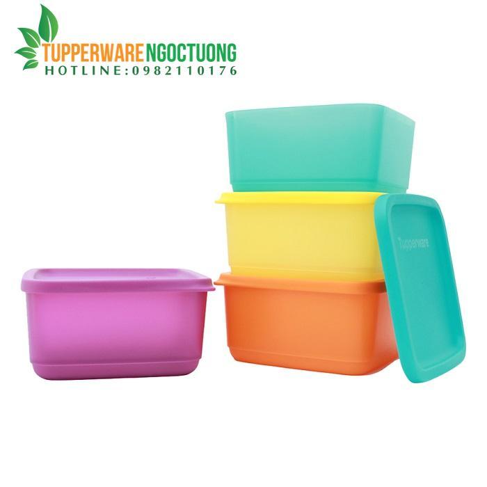 Bộ hộp bảo quản thực phẩm Small Summer Fresh (4 hộp)