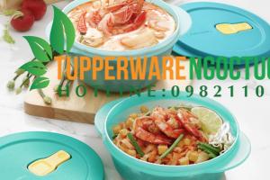 Lựa chọn hộp nhựa Tupperware cho từng môi trường bảo quản thực phẩm