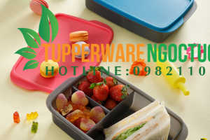 Hộp bảo quản thực phẩm Tupperware có những ưu nhược điểm gì?